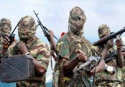 دبلوماسي أمريكي ينفي وجود فتيات نيجيريا المختطفات بالكاميرون