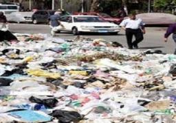 محافظ القاهرة: حملات تفتيشية على 4 أحياء إسبوعيا لمتابعة حالة النظافة