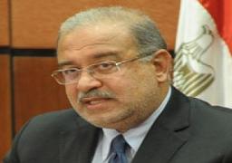 وزير البترول: مصر تتطلع لمزيد من التعاون الاقتصادى مع الجزائر