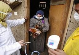 الصحة: ارتفاع الاصابة بانفلونزا الطيورلـ 18 حالة بعد اصابة سيدة باسيوط