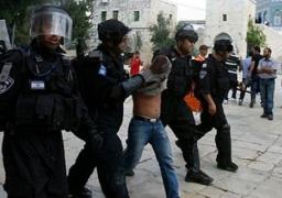 86 اعتداء إسرائيليًا على المقدسات وتدمير 73 مسجدًا فى 2014