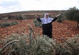 السفير الفلسطيني: لدينا إصرار للتوجه للجنائية الدولية في ظل التعنت الإسرائيلي