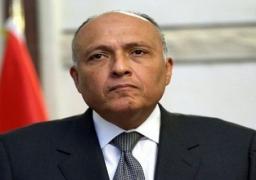 العربي وشكري يبحثان ترتيبات القمة العربية المقررة بالقاهرة مارس المقبل