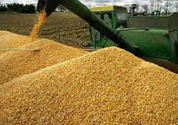 بالصور .. حنفي: تنسيق وتعاون مع وزير الزراعة لنجاح موسم إستلام القمح