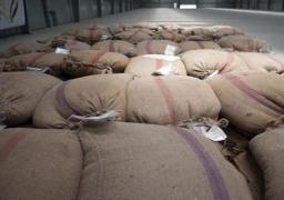 توريد 46 ألفا و423 طنا و245 كيلو جراما من القمح بدمياط