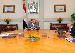 الرئيس يؤكد أهمية مواصلة إجراءات ترشيد الواردات وزيادة الصادرات وتشجيع المنتجات المحلية