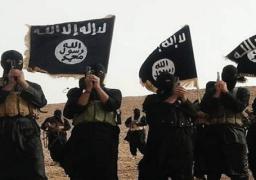"""تركيا تؤكد أن السيطرة على مدينة الباب مهمة لطرد """"داعش"""" من """"الرقة"""""""