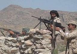 السيطرة على قرية الثوباني باليمن وفرار جماعى للميليشيات