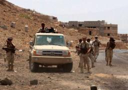 القوات اليمنية تواصل تمشيط الساحل الغربي لقطع طرق إمداد ميليشيات الحوثي