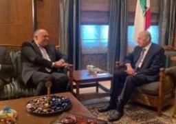 شكري يلتقي رئيس مجلس النواب اللبناني ويشيد بقوة العلاقات الثنائية