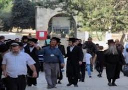 """68 مستوطنا وجنديا إسرائيليا يقتحمون """"الأقصى"""" والمعتكفون يرفضون مغادرته"""