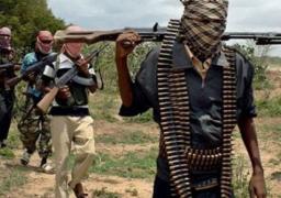 مقتل 20 مدنيا و5 جنود في هجوم مسلح لجماعة بوكو حرام شمالي نيجيريا