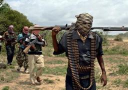 حركة الشباب الصومالية تقتحم قاعدة عسكرية وتستولي على أسلحة