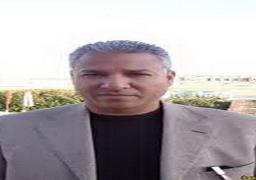اتحاد المصريين بالنمسا يعلن استعداده لتلبية دعوة السيسى لدعم مصر
