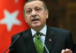"""أردوغان: تركيا """"تتقدم بسرعة"""" باتجاه انتخابات مبكرة"""