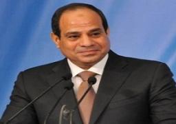 السيسى يوجه الحكومة بتشكيل مجلس أعلى للاستثمار قبل مؤتمر مارس الاقتصادى