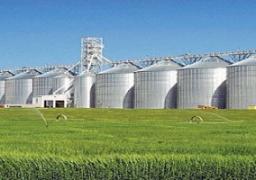 """""""حنفي"""": إنشاء 10 صوامع أفقية بتكلفة 16.5مليون دولار لتخزين القمح"""