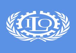منظمة العمل الدولية : قانون النقابات الجديد يسهم في تقنين أوضاع العمال في مصر