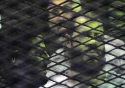 اليوم..استكمال محاكمة 379 إخوانيا بالقتل العمد والتخريب