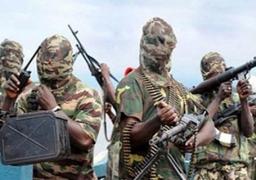النيجر: مقتل 12 من مسلحي بوكو حرام