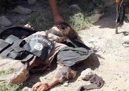 """العراق:مقتل 34 إرهابيا من """"داعش"""" بمنطقتي الجرايش والبغدادي في الأنبار"""