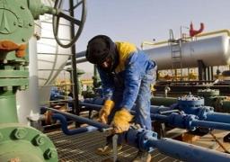 وزير الطاقة الإماراتي: على الجميع تثبيت إنتاج النفط ان لم يستطيعوا خفضه