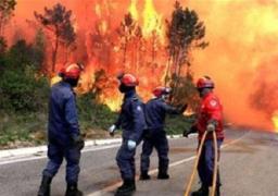 إجلاء المئات بسبب حرائق الغابات في كاليفورنيا ونيو مكسيكو