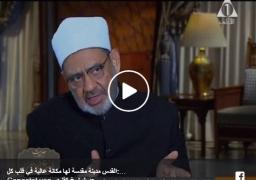 بالفيديو : شيخ الأزهر : القدس مدينة مقدسة لها مكانة عالية في قلب كل مسلم