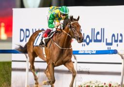 """إلغاء كأس دبي العالمية للخيول بسبب فيروس """"كورونا"""""""