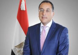 رئيس الوزراء يستقبل نائب الرئيس البرازيلي بمطار القاهرة الدولي