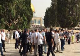 مئات المستوطنين يقتحمون باحات المسجد الأقصى بحماية شرطة الاحتلال