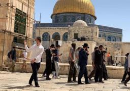 مُستوطنون يقتحمون باحات الأقصى بحماية الاحتلال الإسرائيلي