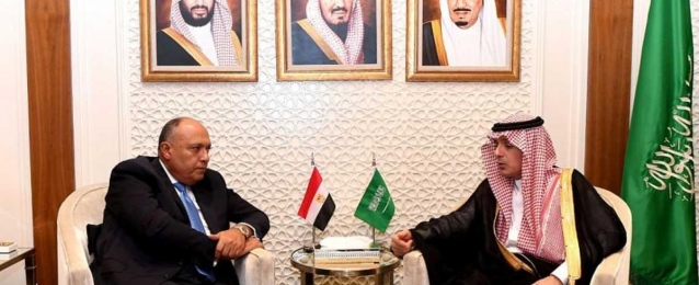 شكري: يلتقى ولي العهد السعودي
