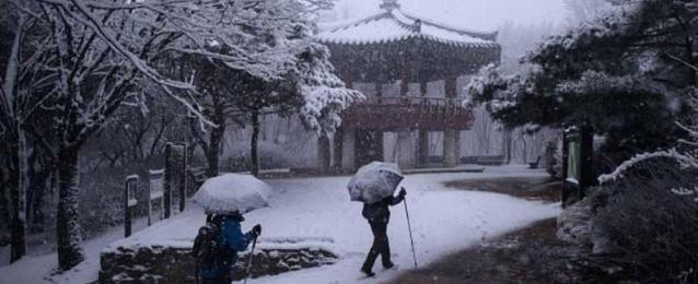 موجة برد قارس  تضرب كوريا الجنوبية .. والحرارة 25 تحت الصفر