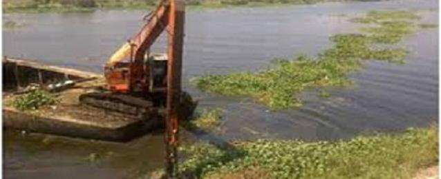 13 حفارا لحصر وإزالة ورد النيل المتسرب على فرع رشيد بالبحيرة