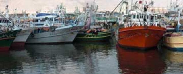 وصول مركب صيد لميناء الأتكة بالسويس عقب إفراج السعودية عنها