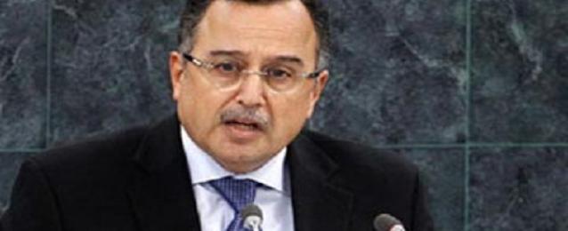 """فهمي: التقارب """"المصري-الروسي لن يؤثر على العلاقات مع أمريكا"""