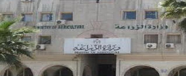 ابو حديد : إنارة مبنى وزارة الزراعة بالطاقة الشمسية خلال شهر