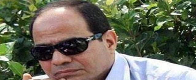 حملة السيسي :مرشحنا حصل علي 94% بعد فرز ثلثي أصوات المصريين بالخارج