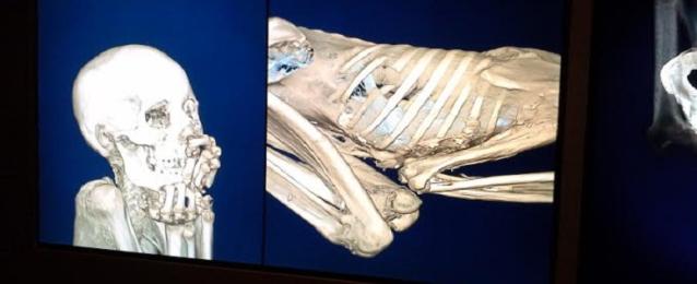 المتحف البريطاني: معرض المومياوات ساعدنا في التقرب من المصرريين القدماء