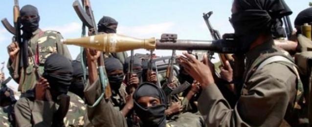 """الرئيس النيجيري يتوعد بـ""""حرب شاملة"""" ضد بوكو حرام"""