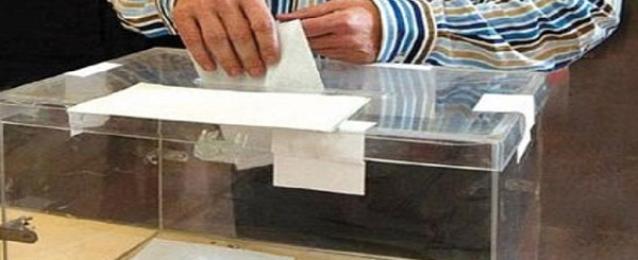 وزارة الخارجية: عدد الناخبين تجاوز ١٢٢ ألف حتى السابعة مساء الجمعة