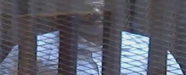 """تأجيل محاكمة مرسي بقضية """"التخابر"""" لـ 29 يونيو لسماع الشهود"""