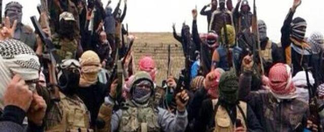"""""""تنظيم داعش """" يسيطر على مناطق جديدة غرب العراق"""