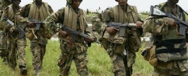 """قوات أمن الكاميرون تقتل 40 مسلحا من """"بوكو حرام"""" قرب الحدود النيجيرية"""