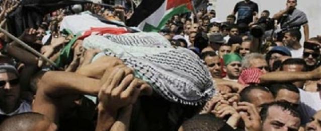 الصحة الفلسطينية: ارتفاع ضحايا غزة إلى 746 شهيدا و4640 جريحا