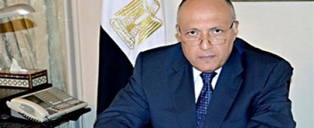 شكري يحضر المؤتمر الثاني للجنة العمل السياسي المصرية الامريكية