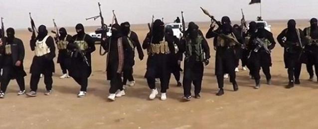 """مقتل وإصابة 25 مسلحا من """"داعش"""" شمالي بابل وديالي بالعراق"""