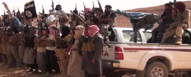 """مقتل 20 عنصرا من """"داعش"""" باشتباكات عنيفة بمحافظة الأنبار"""