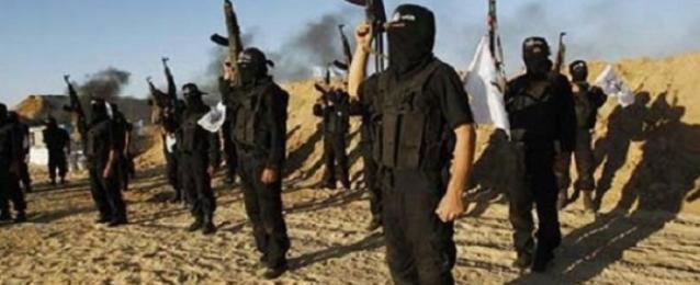 """""""داعش"""" يسيطر على جزء من هضبة استراتيجية مطلة على عين العرب"""